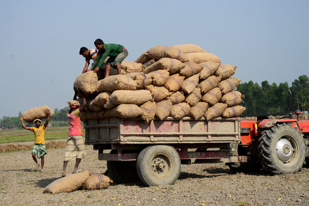Retail Inflation For Farm, Rural Workers Eases In Jan
