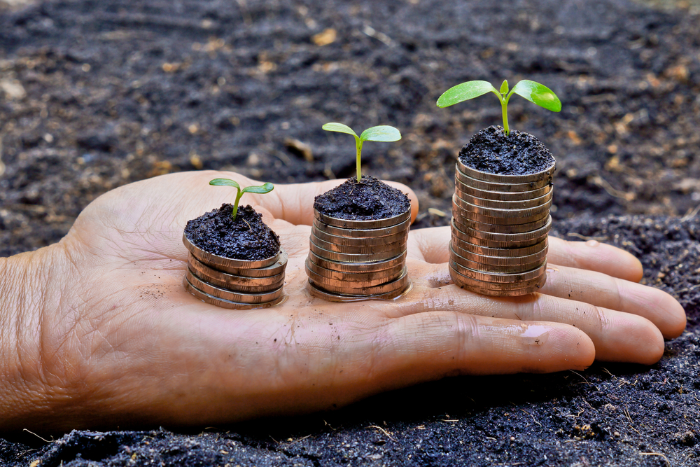 Paving The Way For Holistic Growth