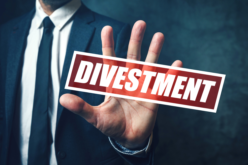 Markets Rally On Divestment Plans, Spending Thrust