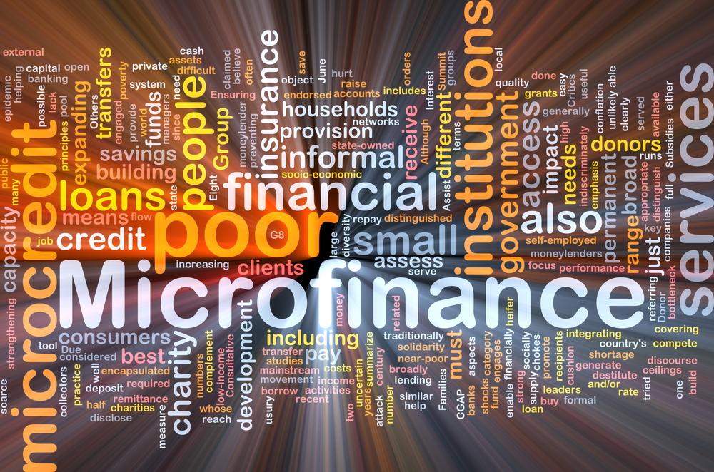 MFI's Gross Loan Portfolio Grows 6.4% As Of Dec 2020: Report