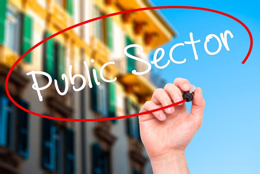 PSUs To Play A Pivotal Role In Strategic Sectors