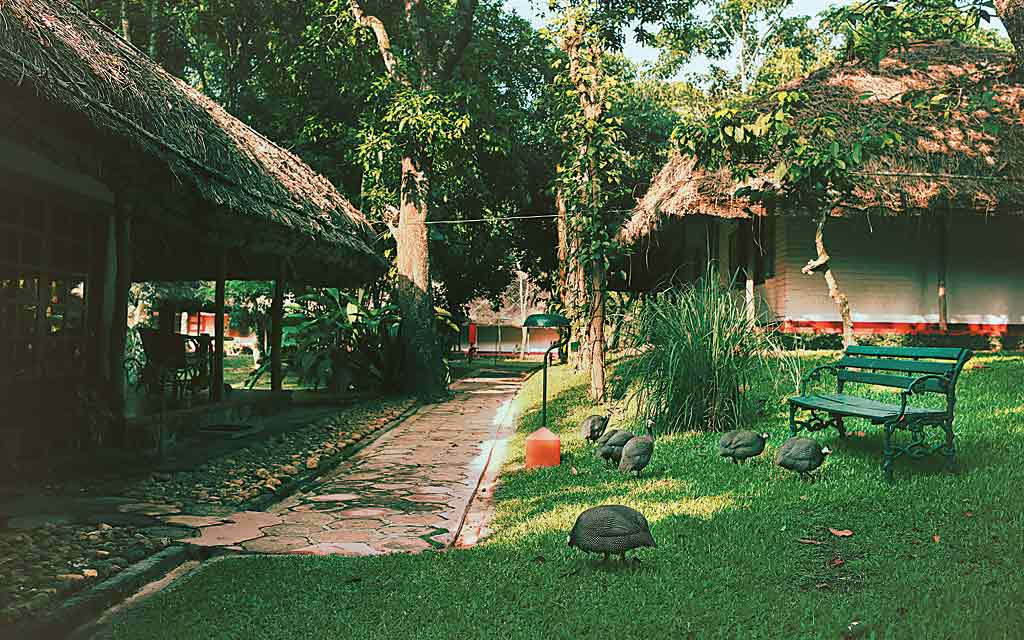 Experience the Unexpected At Spice Village In Thekkady