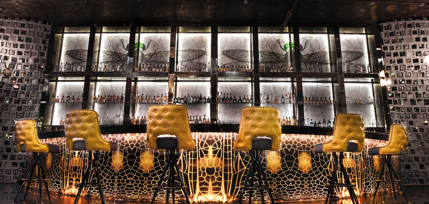 Image result for Dragonfly Experience for an amazing fine dine experience