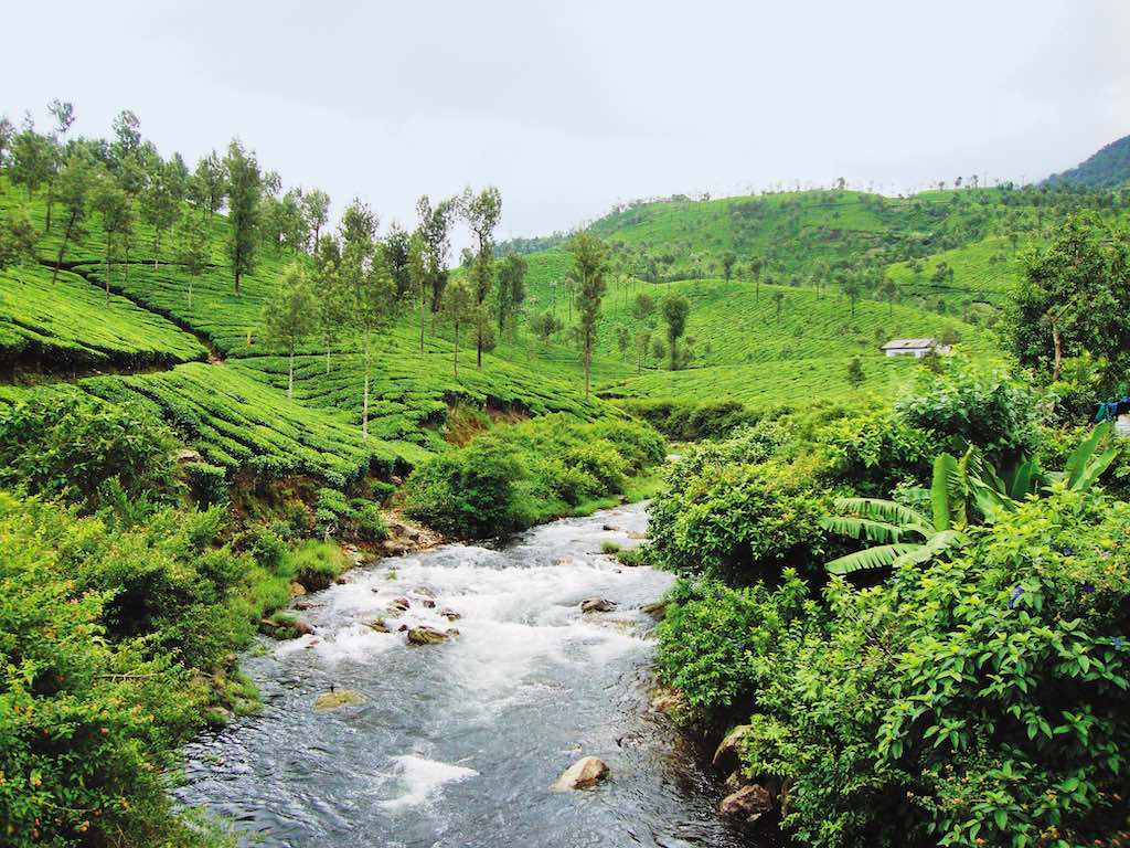The tranquil hill station of Valparai in Coimbatore