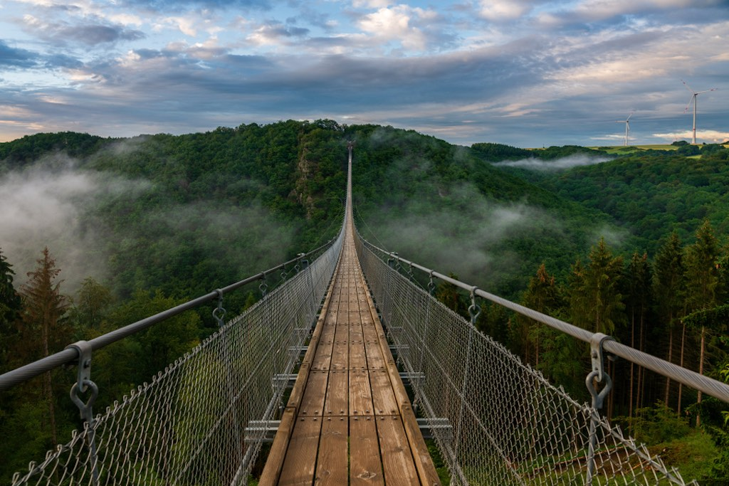 A sprawling view of the suspension bridge
