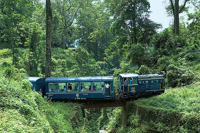 The famous toy train of the Darjeeling Himalayan Railway passes through dense forests on the Mahananda and Rang Tong loop