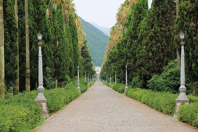 The famous tree-lined pathway in Ramsar, a popular resort town by the Caspian Sea