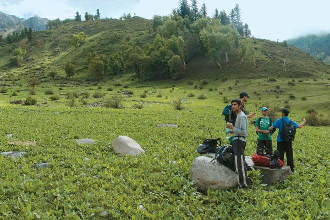 Meadow at Gagnan