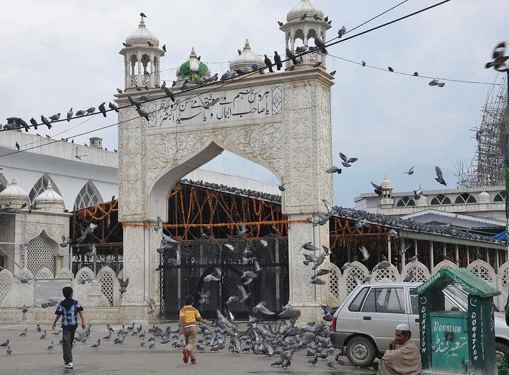 Pigeons flutter around a masjid