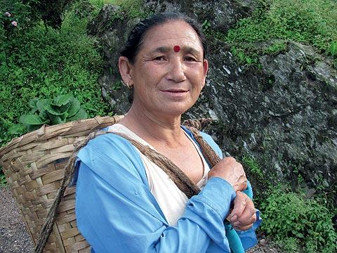 Aruna, a plucker at Darjeeling's Goomtee Tea Estate, looks happy and comes to work well-dressed, wearing a large bindi on her forehead. (From the book Chai: The Experience of Indian Tea, by Rekha Sarin and Rajan Kapoor; Published by Niyogi Books; Price Rs 1,995)