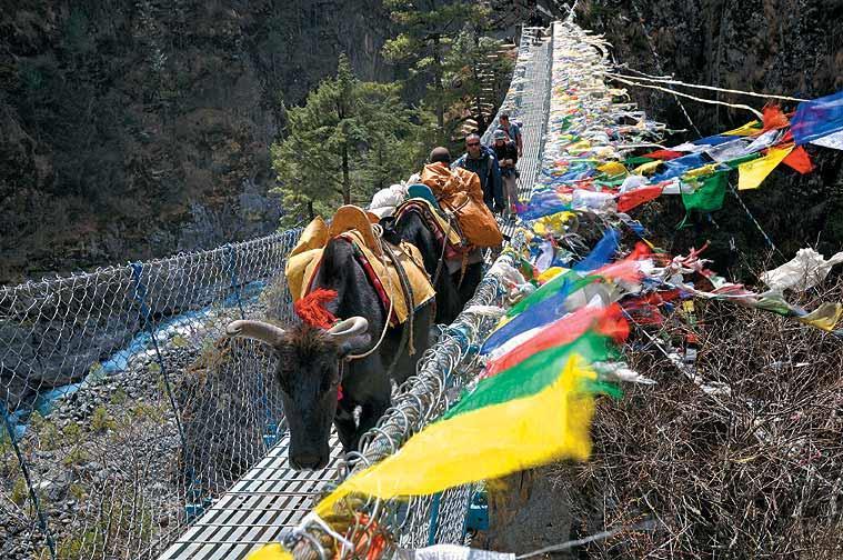 A yak caravan crosses the bridge below Namche Bazar on the way back to Lukla