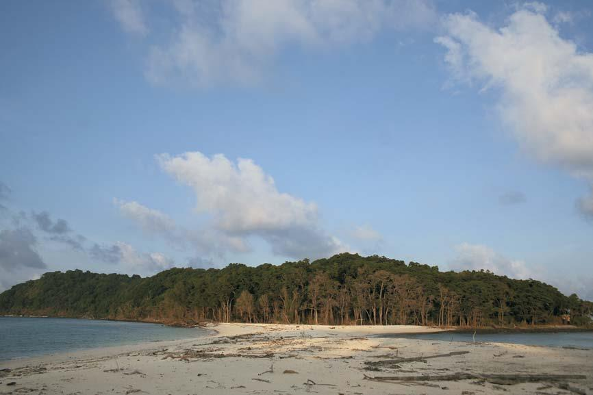 Forests of the Andamans- The unique tropical rainforest here is a mix of floral elements from Indian, Myanmarese, Malaysian and endemic species. There are nearly 2,200 varieties of plants, of which 200 are endemic and 1,300 are not found on the Indian mainland, 50 species of mammals, 270 species of birds and spectacular butterflies. There is fair regional variation too - the South Andaman forests are rich in orchids and ferns, the Middle Andamans have primarily moist deciduous forests, while the North Andamans have wet evergreen forests with dense undergrowth. Stay at Barefoot at Havelock (03192-236008, www.barefootindia.com) and go with them on a trek through the forests.