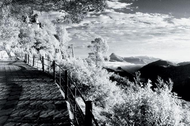 Morning panorama, Coaker--s Walk