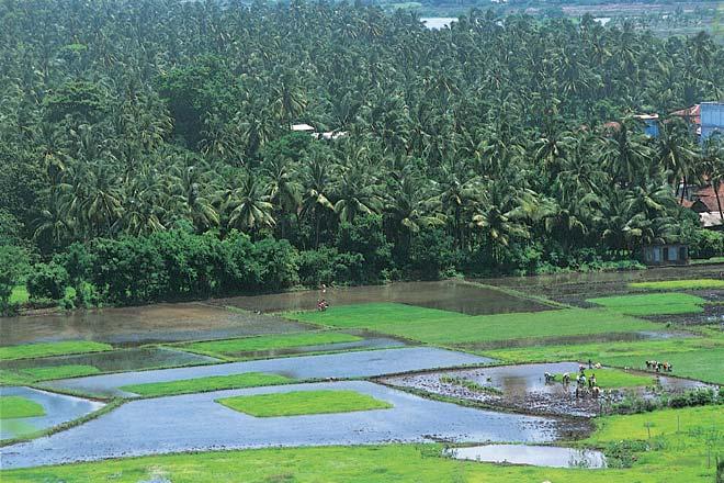 The Konkan Railway plies a scenic route