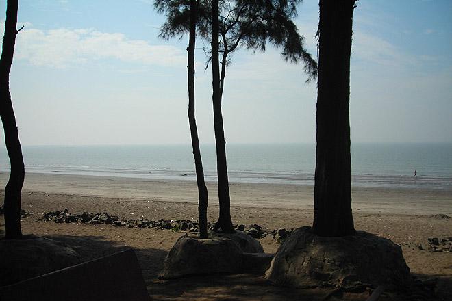 Along the Dahanu-Bordi Beach Road