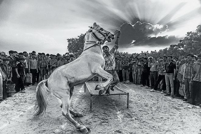 A horse fair at Tarnetar village in Gujarat