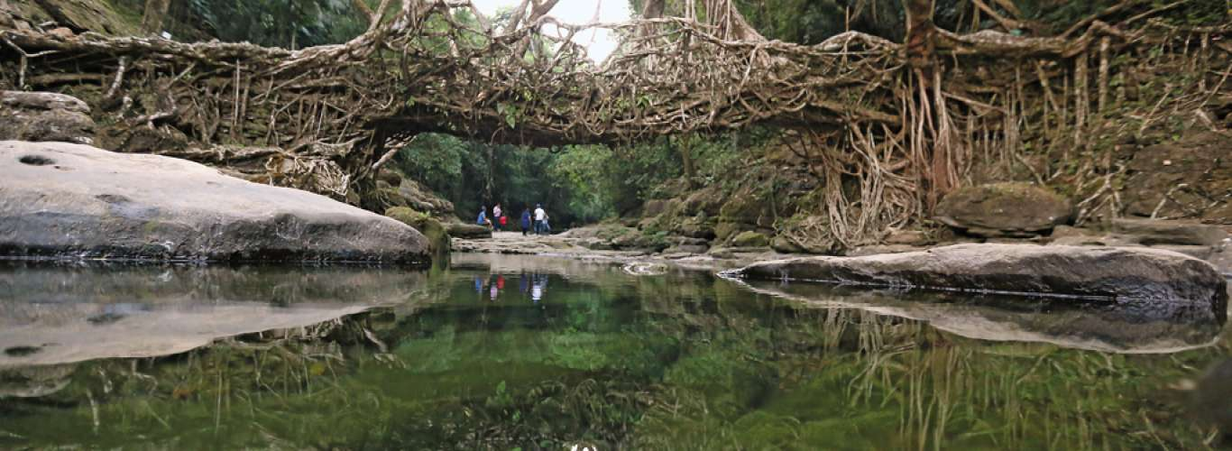 Umshiang: Home of The Living Root Bridges