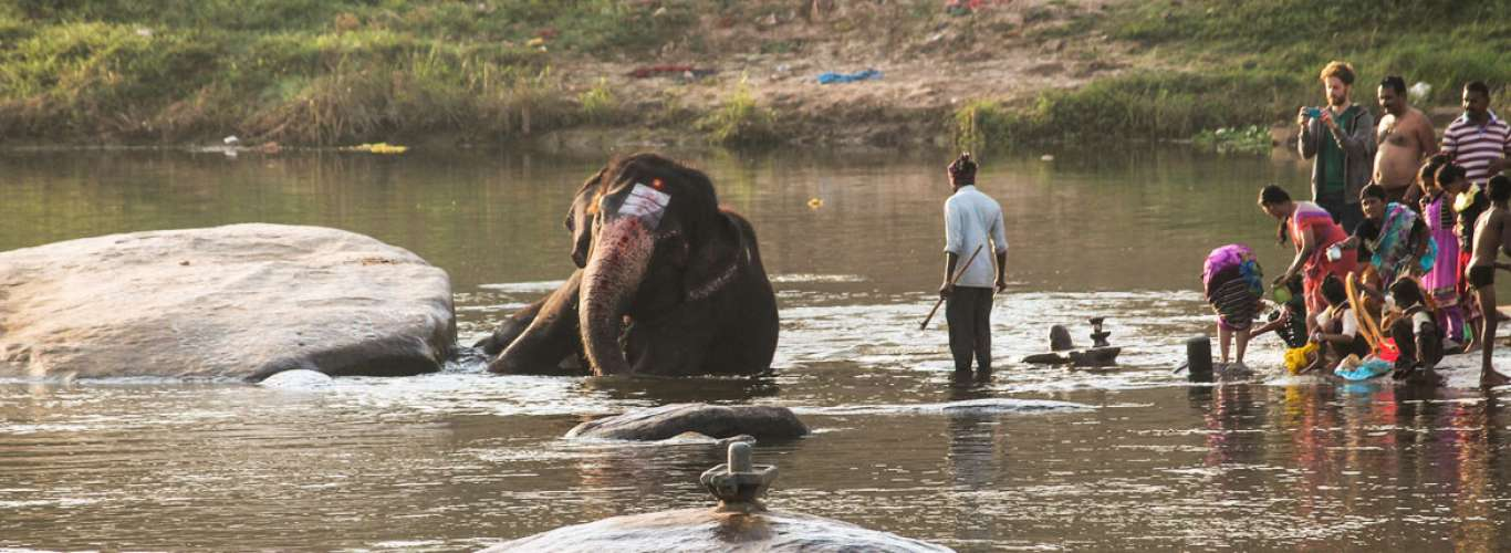 Karnataka: The Elephants of Hampi
