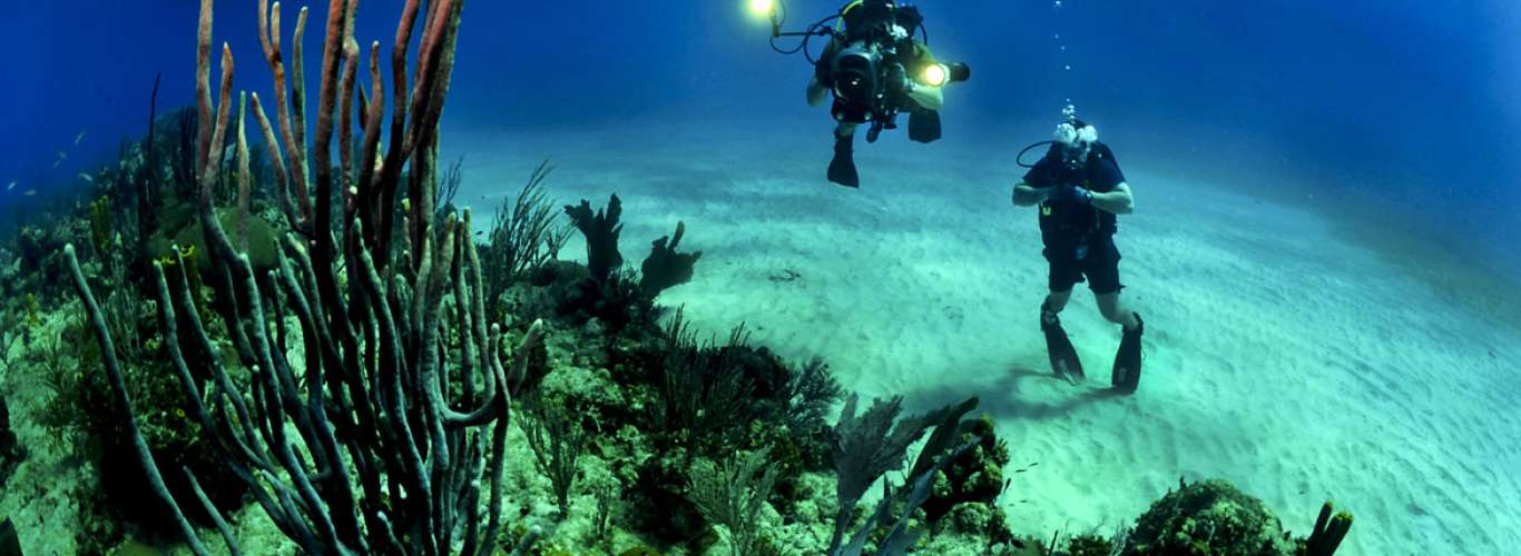Indonesia: Go Diving in Bali This Summer