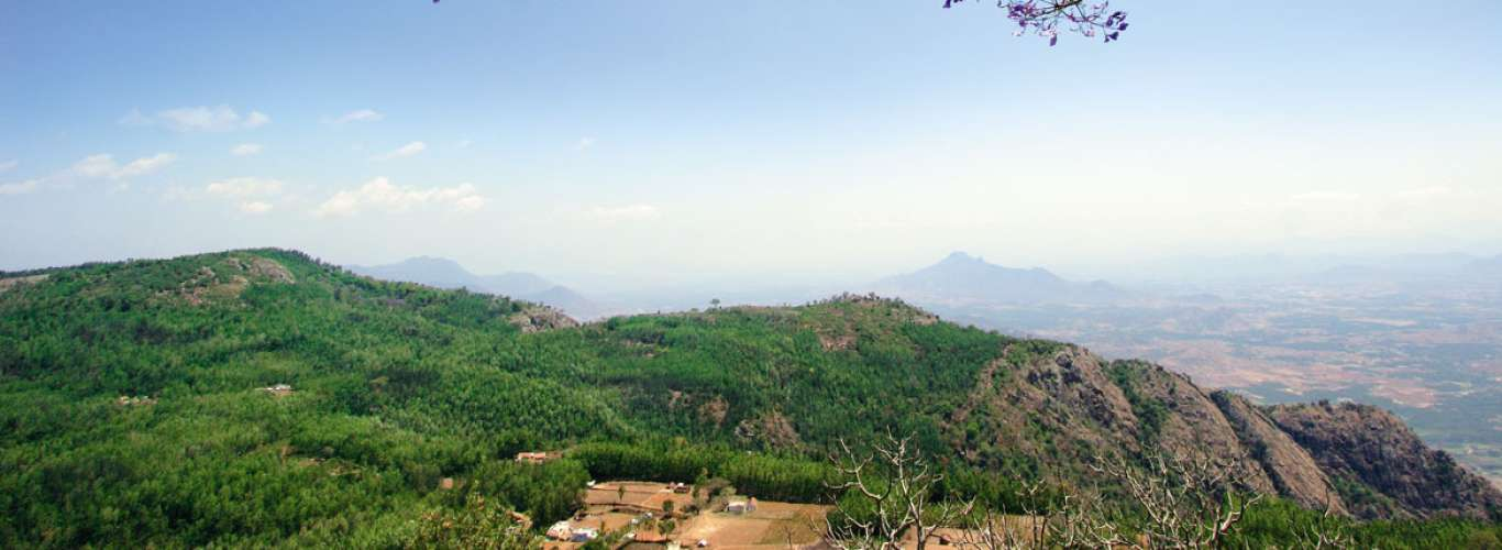 Tamil Nadu: A Quick Guide To Yercaud