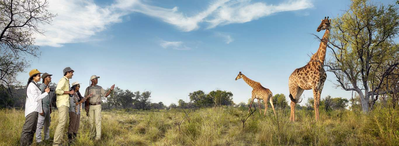 South Africa: The Perfect Summer Getaway