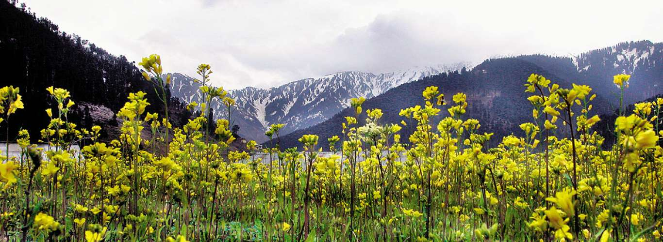 Jammu & Kashmir: Bhaderwah Like Never Before