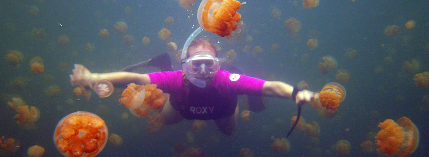 5 Places to Pin on Your Diving Bucket List