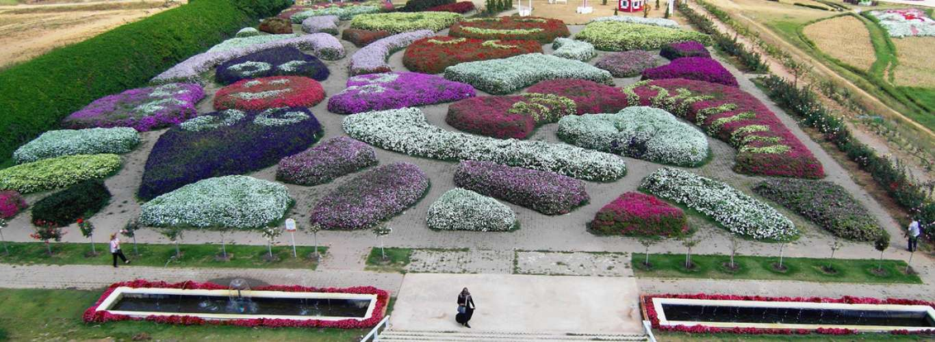 Thailand: In the Land of Flowers