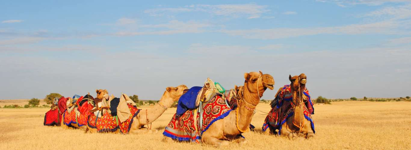A Rann Life with Tents and sunsets