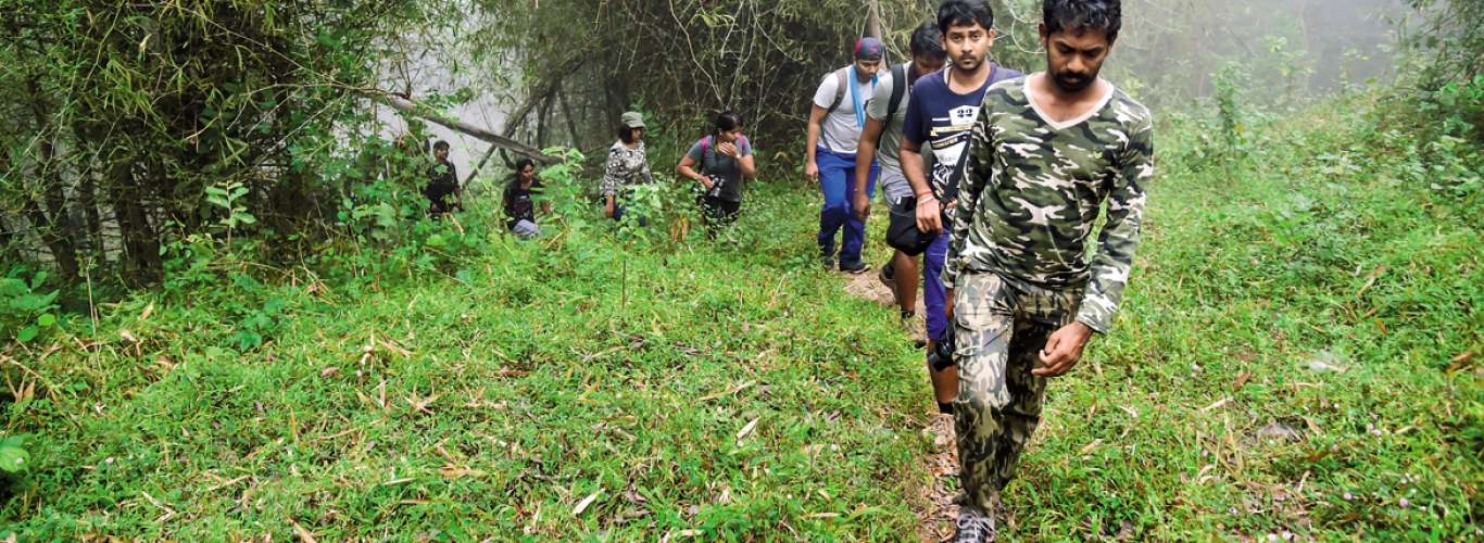 Explore nature's bounty with the Chennai Trekking Club