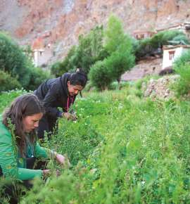 Book a Trip with this Women's Travel Company in Ladakh