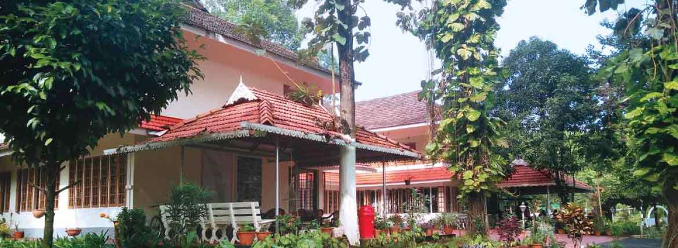 A Tropical Paradise: Rolling in the Green at Dewalokam