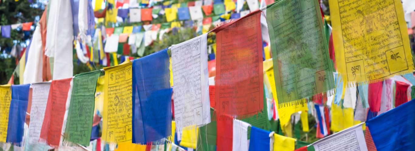 McLeodganj: Where The Monk Dwells