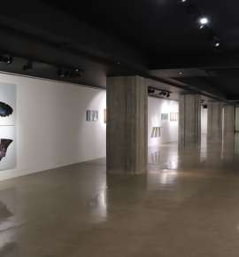 A Gallery In Vadodara Goes Virtual, Here's How They Did It