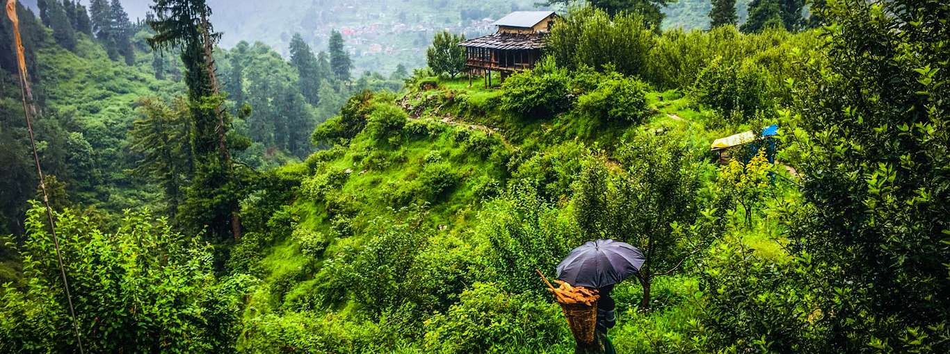 Going To The hills This Season? Here's How You Can Be A Responsible Traveller