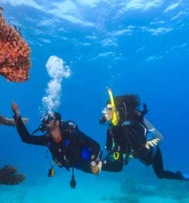 Bucket List: 6 Best Diving Spots In India