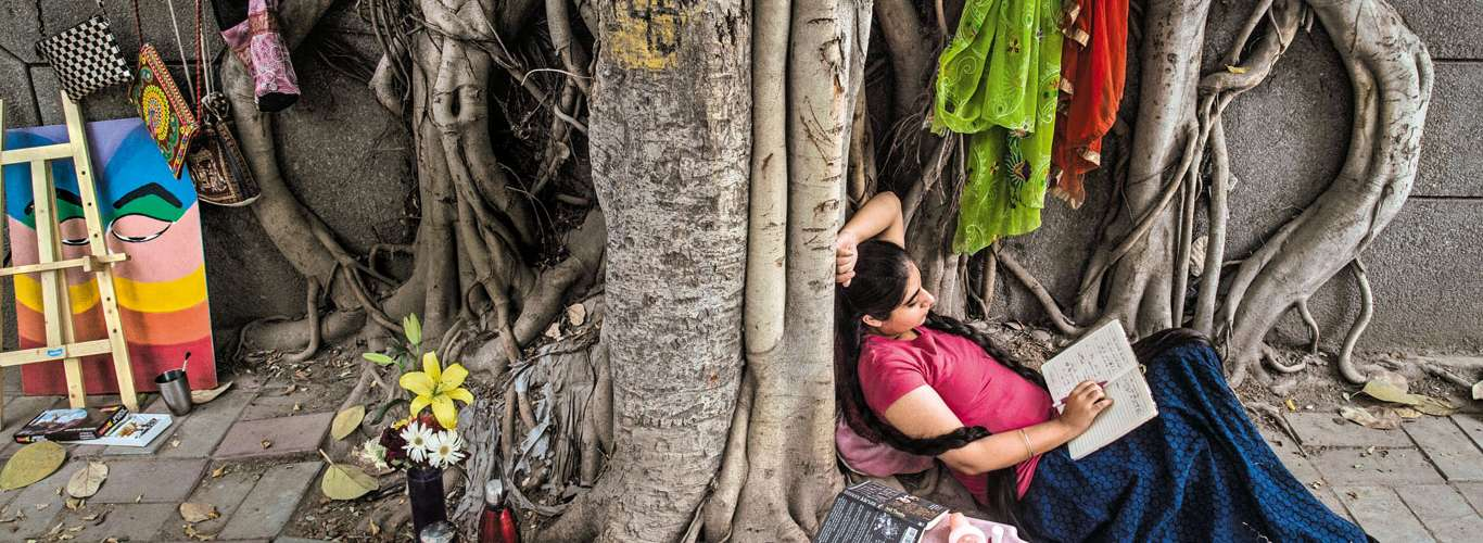 Travelling For The Love Of Trees
