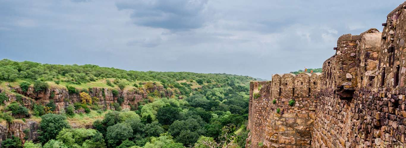 A Guide To The Ranthambore National Park