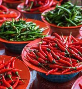 On The Chilli Trail Through India