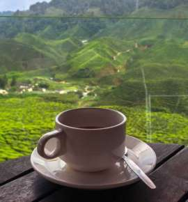 5 Coffee Trails You Must Try in India
