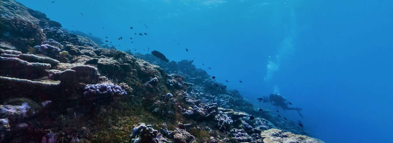 7 Incredible Google Street View Destinations and How to Get There