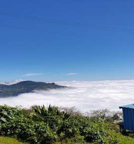 How To Spend a Weekend in Kodai