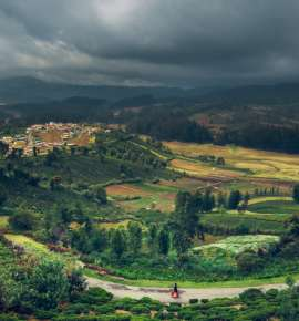 A Road Trip to Ooty
