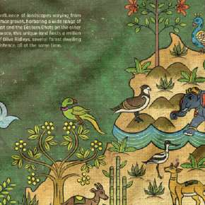 Shaw and Tell: A Chat with the Creator of the Odisha Wildlife Map