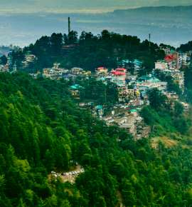 Summer Travel: A Guide to Dharamkot and Around