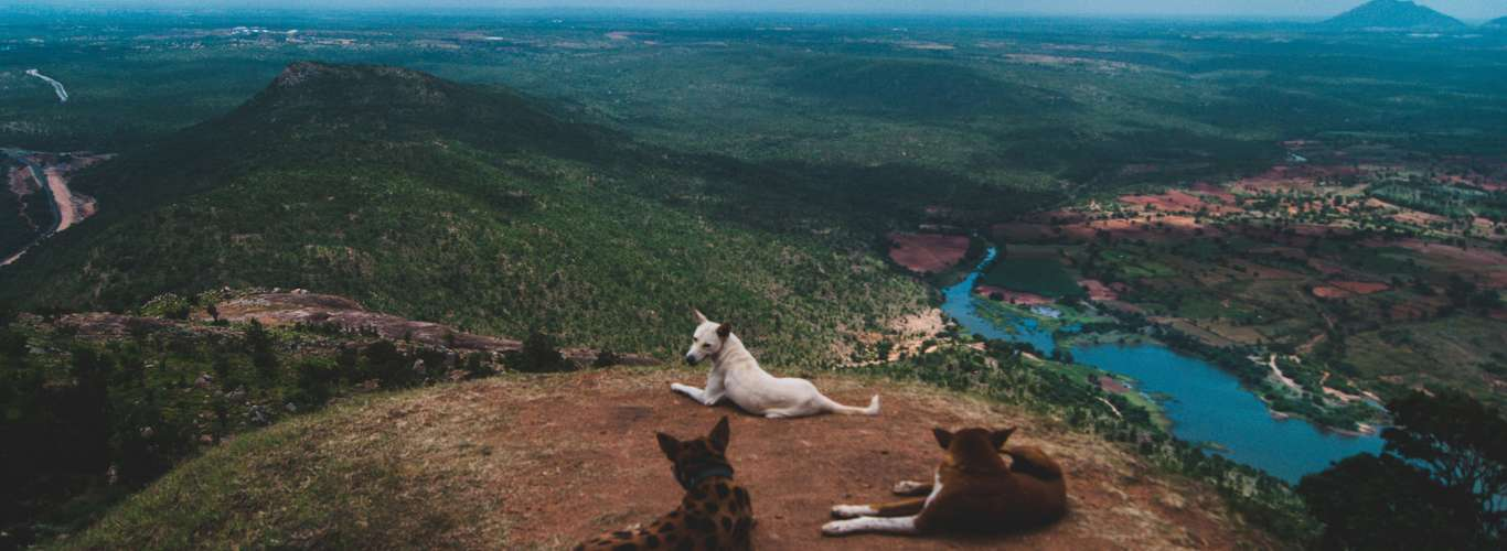 #PostLockdownTravel: How I Did a One-Day Trek
