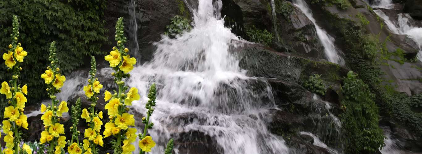 9 of the Most Beautiful Waterfalls in Sikkim