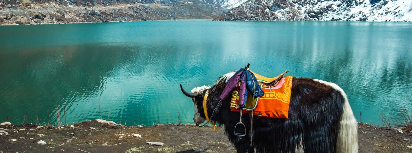 Secret Gangtok: 5 Things That No One Will Tell You About