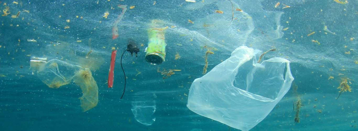 Did you know: What is The Great Pacific Garbage Patch?