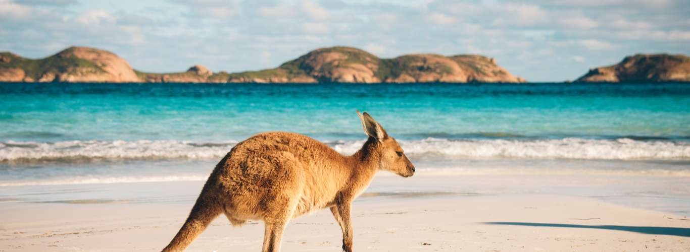Planning a post-COVID-19 trip to Australia? Here's what you need to know